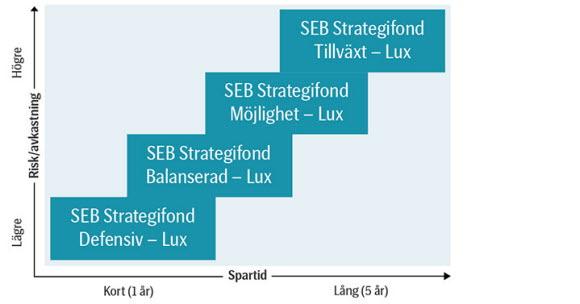seb strategi balanserad lux